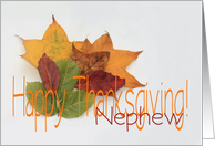 Happy Thanksgiving fall foliage greeting card for Nephew card