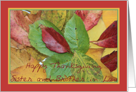 Happy Thanksgiving fall foliage greeting card for Sister and Brother in Law card
