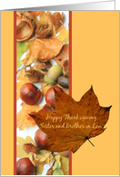 sister and brother in law foliage border thanksgiving card
