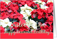 sister in law Poinsettia December Birthday card