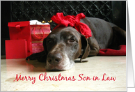 son in law Merry Christmas German pointer at fireplace christmas card