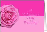 Valentine's Wedding Pretty Pink Rose card