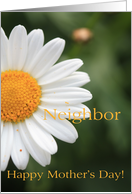 neighbor Happy Mother�s Day - White Daisy card