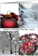 New Mexico Season's Greetings - Red Winter collage state specific christmas card