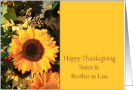 Sister & Brother in Law Happy Thanksgiving Sunflower card