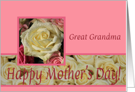 White & Pink Roses mother's day card for Great Grandma card