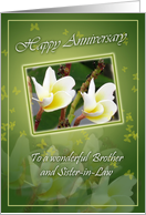Brother and his wife- Wedding Anniversary-Two Flowers card