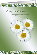Congratulations on adoption - Three daisy flowers card