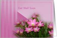 Get well soon after lasik eye surgery - Pink lilies card