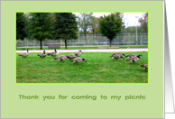 Thank you for coming to picnic card