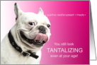 Funny French Bulldog Birthday for Dog Lover card