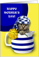 Happy Mother's Day. Funny Kitten card