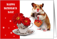 Happy Mother's Day. Funny Hamster card
