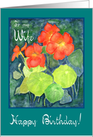 Wife's Birthday 'Nasturtiums' Card