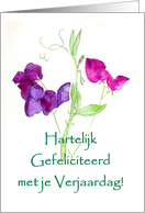 Sweet Peas Birthday Card - Dutch Greeting card