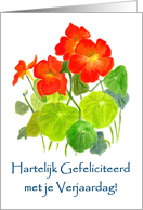 Nasturtiums Birthday card - Dutch Greeting card