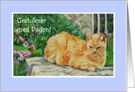 Birthday Card, Norwegian Greeting, Ginger Cat card