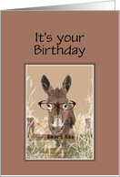 Birthday Humor Official Smart Ass Watercolor Donkey card