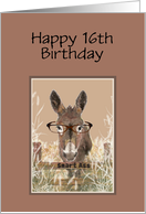 16th Birthday Humor Official Smart Ass Watercolor Donkey card