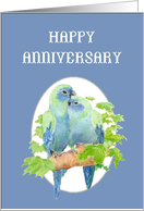 Happy Anniversary, Cute Cuddling Parrot Couple card
