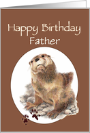 Fun Father Happy Birthday Watercolor Otter Animal card