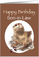 Fun Son-in-Law Happy Birthday Watercolor Otter Animal card