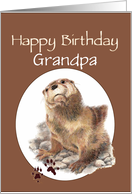 Fun Grandpa Happy Birthday Watercolor Otter Animal card