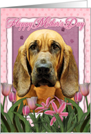 Happy Mother's Day Bloodhound in Pink Tulips card