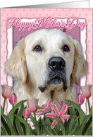 Happy Mother's Day Golden Retriever Dog in Pink Tulips card