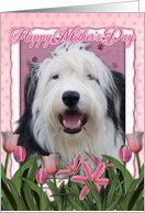 Happy Mother's Day Old English Sheepdog in Pink Tulips card