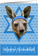 Hanukkah - Star of David - Kangaroo card