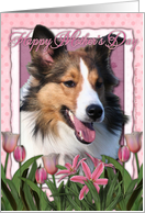 Happy Mother's Day Sheltie in Pink Tulips card