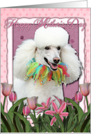 Happy Mother's Day White Poodle in Pink Tulips card