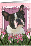 Happy Mother's Day Boston Terrier in Pink Tulips card