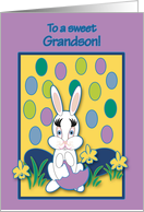 Grandson Easter Raining Jelly Beans Bunny card
