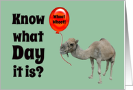 Hump Day Funny Camel with Big Red Balloon card