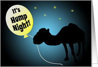 Hump Day Silhouetted Camel Under Starry Night Sky card