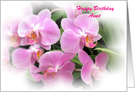 Aunt-Birthday-mini orchids card