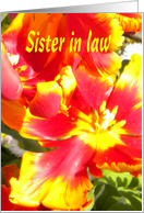 Sister in law-HappyBirthday-Yellow, Orange Flowers card