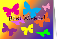 Good Luck Wishes Colorful Butterflies in Rainbow card