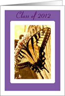Daughter-Graduation-Beautiful Butterfly on Flower card