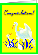 Congratulations Becoming Great Grandparents of Twins-Mama & Baby Egrets card
