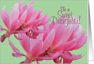 Congratulations Daughter Beautiful Pink Flower Blossoms Card