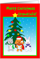 Grandchild Christmas Singing Animal Carolers Card