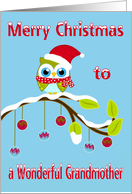 Christmas To Grandmother, Owl with Santa Claus hat on a tree limb card