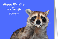 Birthday to Lawyer, Raccoon smiling with pearly white dentures, blue card