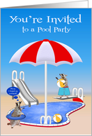 Invitations, Pool Party, Raccoons by pool with beach balls, red card