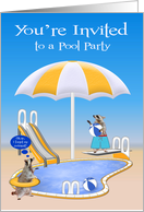 Invitations, Pool Party, general, Raccoons by pool with beach balls card