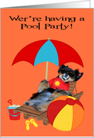 Invitations, Pool Party, Pomeranian in sunglasses with beach ball card