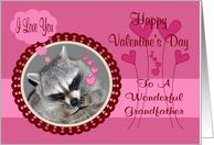 Valentine's Day To Grandfather, Raccoon in heart frame card